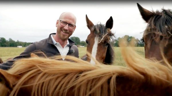 Johan Björnsson Alebäcks Horse & Breeding