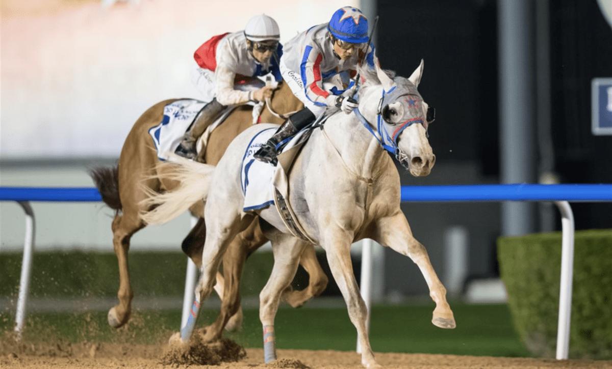 Foto: Erika Rasmusson/Dubai Racing Club