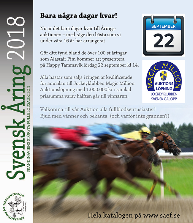 SAEF annons2018