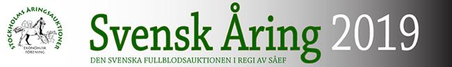 svenskaring2019 logo